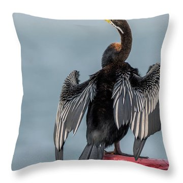 Australasian Darter Throw Pillow