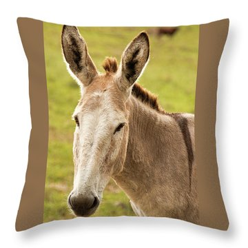 Throw Pillow featuring the photograph Donkey Out In Nature by Rob D Imagery
