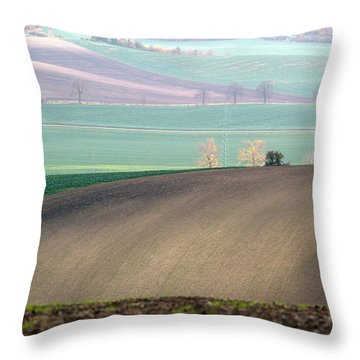 Autumn In South Moravia 5 Throw Pillow