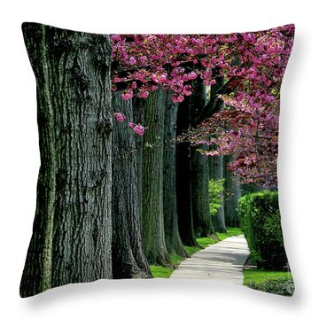 5-29-2009l Throw Pillow