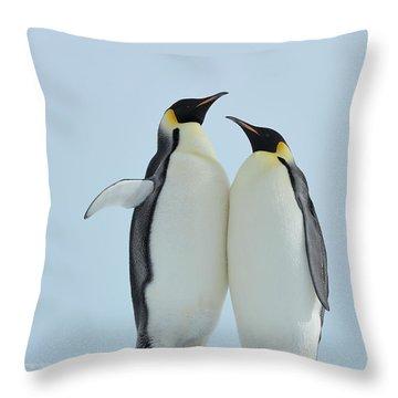 Emperor Penguin Throw Pillows Fine Art America