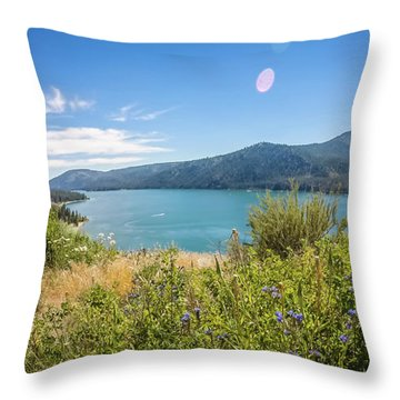 Throw Pillow featuring the photograph Nature Scenics Around Spokane River Washington by Alex Grichenko