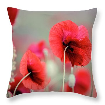 Red Corn Poppy Flowers Throw Pillow