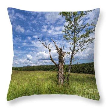 The Harz National Park Throw Pillow