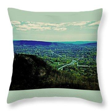 691 Throw Pillow