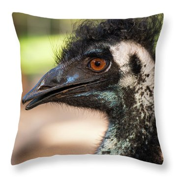 Throw Pillow featuring the photograph Emu By Itself Outdoors During The Daytime. by Rob D Imagery