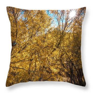 Throw Pillow featuring the photograph Autumnal Park. Autumn Trees And Leaves. Fall by Alex Grichenko