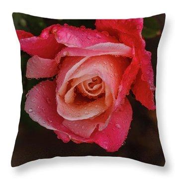A Beautiful Wet Rose Throw Pillow