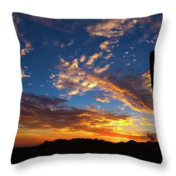 A Blanket Of Many Colors Throw Pillow