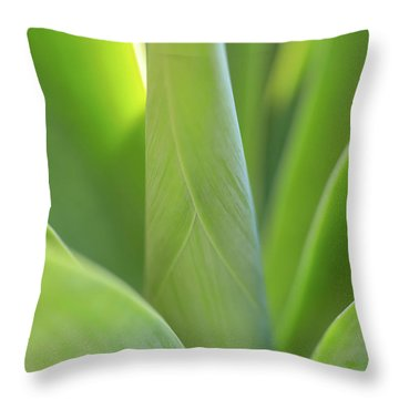 A Bouquet Of Leaves Throw Pillow