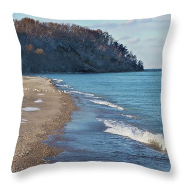 Throw Pillow featuring the photograph A Brisk Morning by Kim Hojnacki