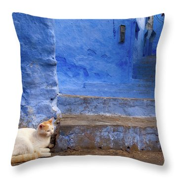 A Cat In Chefchaouen Throw Pillow