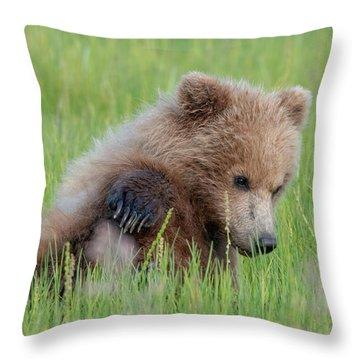 A Coy Cub Throw Pillow