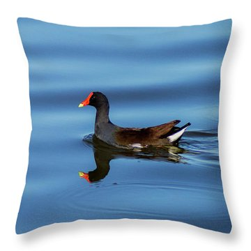 A Day For Reflection Throw Pillow