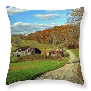 Throw Pillow featuring the photograph A Farm On An Autumn Day by Angela Murdock