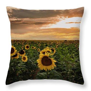 A Field Of Sunflowers At Sunset Throw Pillow