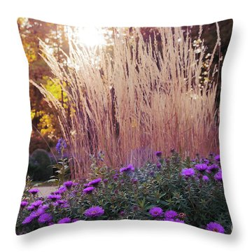 A Flower Bed In The Autumn Park Throw Pillow