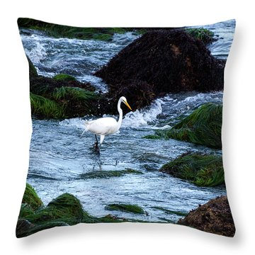 A Great Egret Watches The Incoming Tide Throw Pillow