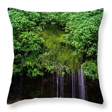 A Hidden Gem Throw Pillow