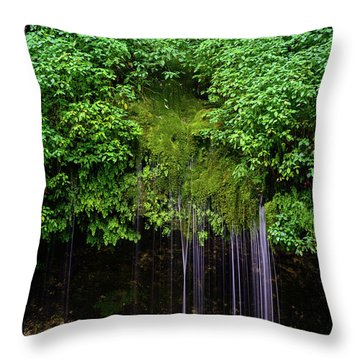 A Hidden Gem Throw Pillow