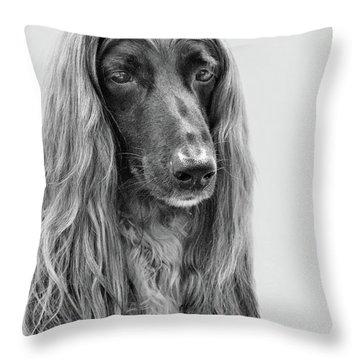A Kind And Regal Spirit Throw Pillow