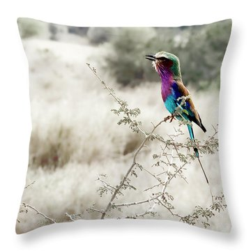 A Lilac Breasted Roller Sings, Desaturated Throw Pillow