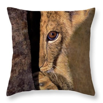 A Lion Cub Plays Hide And Seek Wildlife Rescue Throw Pillow