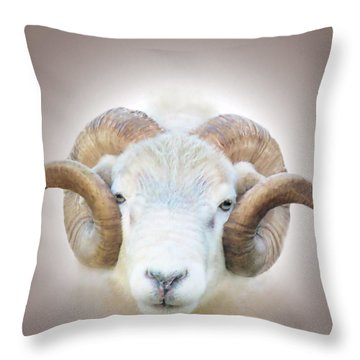 A Little Ram  Throw Pillow