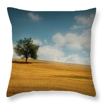 Throw Pillow featuring the photograph A Machias Hillside by Guy Whiteley