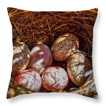 A Nest Of Cactus And Hay On The Ground Throw Pillow