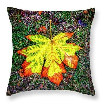 A New Leaf Throw Pillow
