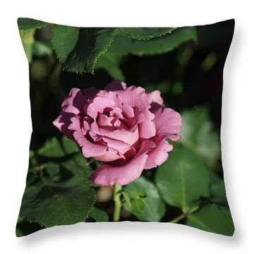 A New Rose Throw Pillow