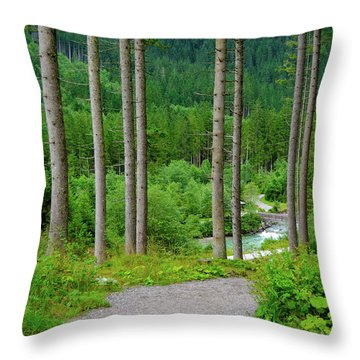 A Path To The River Throw Pillow
