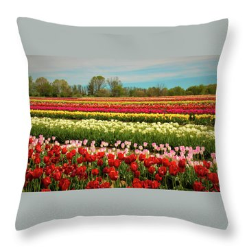 A Piece Of Holland In Jersey Throw Pillow