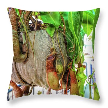 A Pitcher Plant On Our Terrace In Thailand Throw Pillow