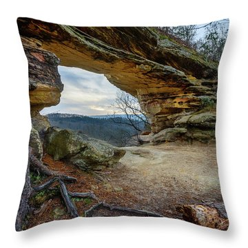 A Portal Through Time Throw Pillow