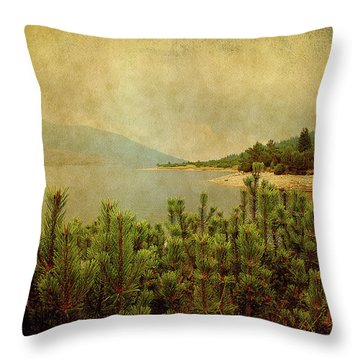 Throw Pillow featuring the photograph A Quiet Moment Before Storm... by Milena Ilieva