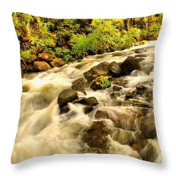 A River Turns Throw Pillow
