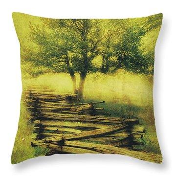 A Shady Tree On A Foggy Day Fx Throw Pillow