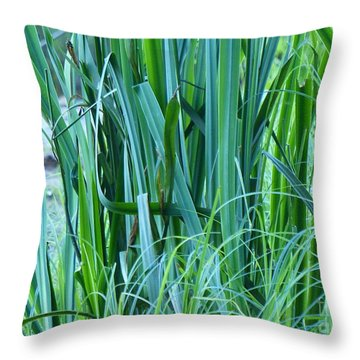 Throw Pillow featuring the photograph A Shock Of Green by Rosanne Licciardi