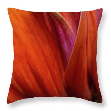 Throw Pillow featuring the photograph A Slice From The Cone by Dale Kincaid