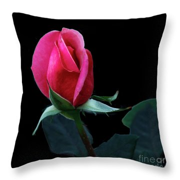 A Special Rose Bud Throw Pillow