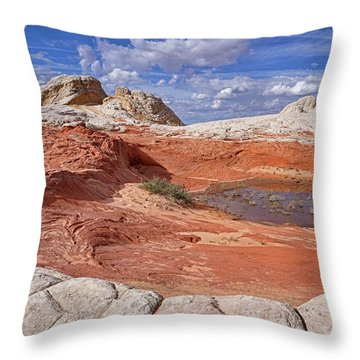 A Strange World Throw Pillow