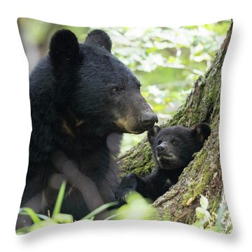 A Sunny Morning With Mom Throw Pillow