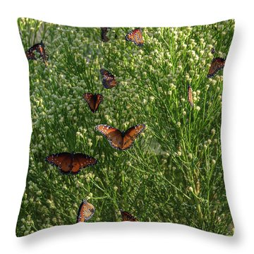 A Swarm Of Queens Throw Pillow