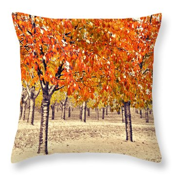 Throw Pillow featuring the photograph A Touch Of Winter by SimplyCMB