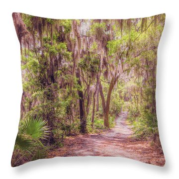 Throw Pillow featuring the photograph A Trail Into Time by John M Bailey
