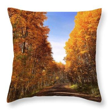 A Walk Down Memory Lane Throw Pillow
