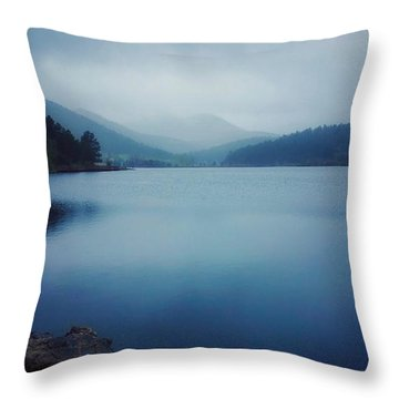 Throw Pillow featuring the photograph A Washed Landscape by Dan Miller