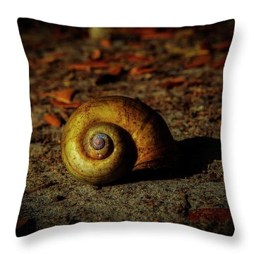Abandon Home Throw Pillow